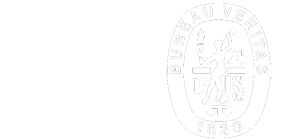 ISO 14001 Veritas Logo