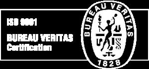 ISO 9001 Veritas Logo